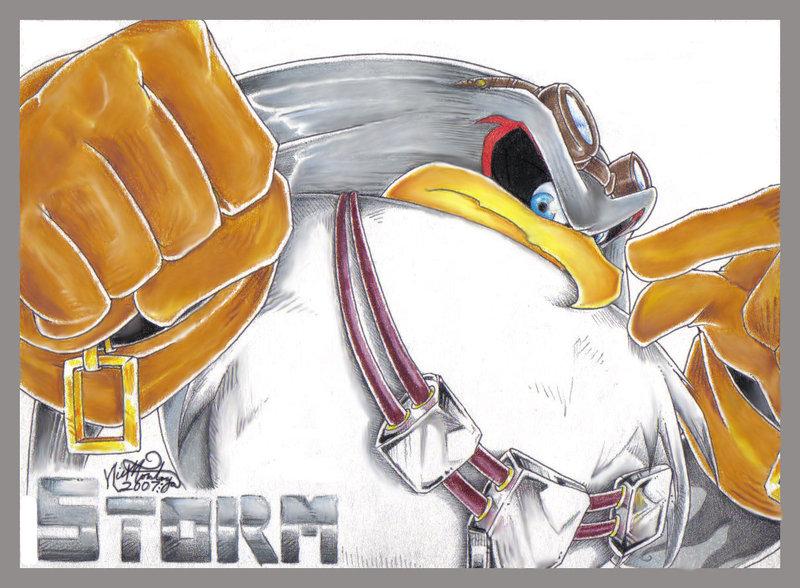Storm the albatross human